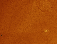 Mercuriusovergang H-alfa, Geert Vandenbulcke