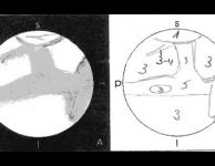 Formulier Marswaarnemingen